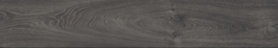 D2025 Leysin Oak